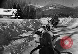 Image of weasel United States USA, 1943, second 48 stock footage video 65675071681