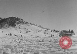 Image of weasel United States USA, 1943, second 60 stock footage video 65675071682