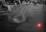 Image of 1936 Olympic Games diving Berlin Germany, 1936, second 16 stock footage video 65675071684