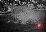 Image of 1936 Olympic Games diving Berlin Germany, 1936, second 17 stock footage video 65675071684
