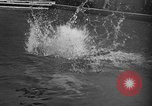 Image of 1936 Olympic Games diving Berlin Germany, 1936, second 51 stock footage video 65675071684
