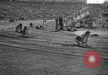 Image of Relay race in 1936 Olympics Berlin Germany, 1936, second 53 stock footage video 65675071686