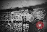 Image of Relay race medal ceremony 1936 Olympics Berlin Germany, 1936, second 7 stock footage video 65675071688