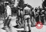 Image of 442nd Regimental Combat Team Mississippi United States USA, 1942, second 5 stock footage video 65675071695