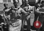 Image of 442nd Regimental Combat Team Mississippi United States USA, 1942, second 57 stock footage video 65675071699