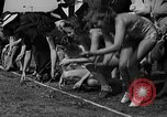 Image of frogs jump New York United States USA, 1939, second 10 stock footage video 65675071716