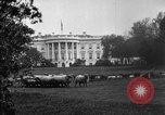 Image of Woodrow Wilson signs proclamation of war against Germany Washington DC USA, 1917, second 2 stock footage video 65675071733