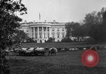 Image of Woodrow Wilson signs proclamation of war against Germany Washington DC USA, 1917, second 3 stock footage video 65675071733