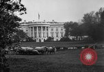 Image of Woodrow Wilson signs proclamation of war against Germany Washington DC USA, 1917, second 5 stock footage video 65675071733