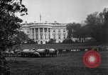 Image of Woodrow Wilson signs proclamation of war against Germany Washington DC USA, 1917, second 8 stock footage video 65675071733