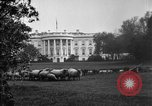 Image of Woodrow Wilson signs proclamation of war against Germany Washington DC USA, 1917, second 9 stock footage video 65675071733