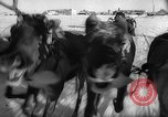 Image of reindeer race Russia, 1962, second 30 stock footage video 65675071769
