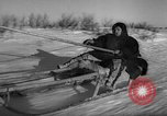 Image of reindeer race Russia, 1962, second 36 stock footage video 65675071769