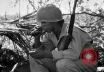 Image of 158th Infantry 2nd Battalion Arawe New Britain Papua New Guinea, 1943, second 13 stock footage video 65675071777