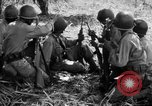 Image of 158th Infantry 2nd Battalion Arawe New Britain Papua New Guinea, 1943, second 31 stock footage video 65675071777