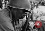 Image of 158th Infantry 2nd Battalion Arawe New Britain Papua New Guinea, 1943, second 44 stock footage video 65675071777