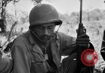 Image of 158th Infantry 2nd Battalion Arawe New Britain Papua New Guinea, 1943, second 52 stock footage video 65675071777