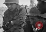 Image of 158th Infantry 2nd Battalion Arawe New Britain Papua New Guinea, 1943, second 57 stock footage video 65675071777