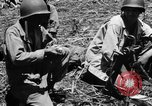 Image of 158th Infantry 2nd Battalion Arawe New Britain Papua New Guinea, 1943, second 24 stock footage video 65675071779