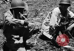 Image of 158th Infantry 2nd Battalion Arawe New Britain Papua New Guinea, 1943, second 25 stock footage video 65675071779
