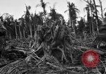 Image of 158th Infantry 2nd Battalion Arawe New Britain Papua New Guinea, 1943, second 38 stock footage video 65675071779