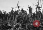 Image of 158th Infantry 2nd Battalion Arawe New Britain Papua New Guinea, 1943, second 40 stock footage video 65675071779