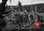 Image of 158th Infantry 2nd Battalion Arawe New Britain Papua New Guinea, 1943, second 41 stock footage video 65675071779