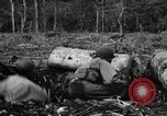 Image of 158th Infantry 2nd Battalion Arawe New Britain Papua New Guinea, 1943, second 43 stock footage video 65675071779