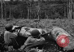 Image of 158th Infantry 2nd Battalion Arawe New Britain Papua New Guinea, 1943, second 48 stock footage video 65675071779