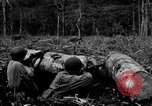 Image of 158th Infantry 2nd Battalion Arawe New Britain Papua New Guinea, 1943, second 56 stock footage video 65675071779