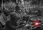 Image of 158th Infantry 2nd Battalion Arawe New Britain Papua New Guinea, 1943, second 4 stock footage video 65675071780