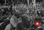 Image of 158th Infantry 2nd Battalion Arawe New Britain Papua New Guinea, 1943, second 7 stock footage video 65675071780