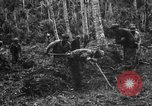 Image of 158th Infantry 2nd Battalion Arawe New Britain Papua New Guinea, 1943, second 14 stock footage video 65675071780