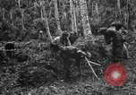 Image of 158th Infantry 2nd Battalion Arawe New Britain Papua New Guinea, 1943, second 15 stock footage video 65675071780