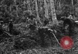 Image of 158th Infantry 2nd Battalion Arawe New Britain Papua New Guinea, 1943, second 16 stock footage video 65675071780