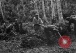 Image of 158th Infantry 2nd Battalion Arawe New Britain Papua New Guinea, 1943, second 17 stock footage video 65675071780