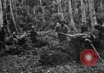 Image of 158th Infantry 2nd Battalion Arawe New Britain Papua New Guinea, 1943, second 18 stock footage video 65675071780