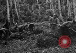 Image of 158th Infantry 2nd Battalion Arawe New Britain Papua New Guinea, 1943, second 19 stock footage video 65675071780