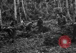 Image of 158th Infantry 2nd Battalion Arawe New Britain Papua New Guinea, 1943, second 20 stock footage video 65675071780