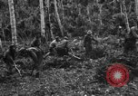 Image of 158th Infantry 2nd Battalion Arawe New Britain Papua New Guinea, 1943, second 21 stock footage video 65675071780