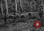 Image of 158th Infantry 2nd Battalion Arawe New Britain Papua New Guinea, 1943, second 22 stock footage video 65675071780
