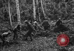 Image of 158th Infantry 2nd Battalion Arawe New Britain Papua New Guinea, 1943, second 23 stock footage video 65675071780