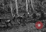 Image of 158th Infantry 2nd Battalion Arawe New Britain Papua New Guinea, 1943, second 24 stock footage video 65675071780