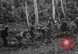 Image of 158th Infantry 2nd Battalion Arawe New Britain Papua New Guinea, 1943, second 25 stock footage video 65675071780
