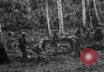 Image of 158th Infantry 2nd Battalion Arawe New Britain Papua New Guinea, 1943, second 26 stock footage video 65675071780