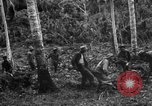 Image of 158th Infantry 2nd Battalion Arawe New Britain Papua New Guinea, 1943, second 29 stock footage video 65675071780