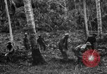 Image of 158th Infantry 2nd Battalion Arawe New Britain Papua New Guinea, 1943, second 30 stock footage video 65675071780
