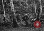 Image of 158th Infantry 2nd Battalion Arawe New Britain Papua New Guinea, 1943, second 31 stock footage video 65675071780