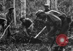 Image of 158th Infantry 2nd Battalion Arawe New Britain Papua New Guinea, 1943, second 33 stock footage video 65675071780
