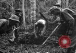 Image of 158th Infantry 2nd Battalion Arawe New Britain Papua New Guinea, 1943, second 34 stock footage video 65675071780